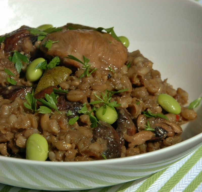 chicken and barley risotto