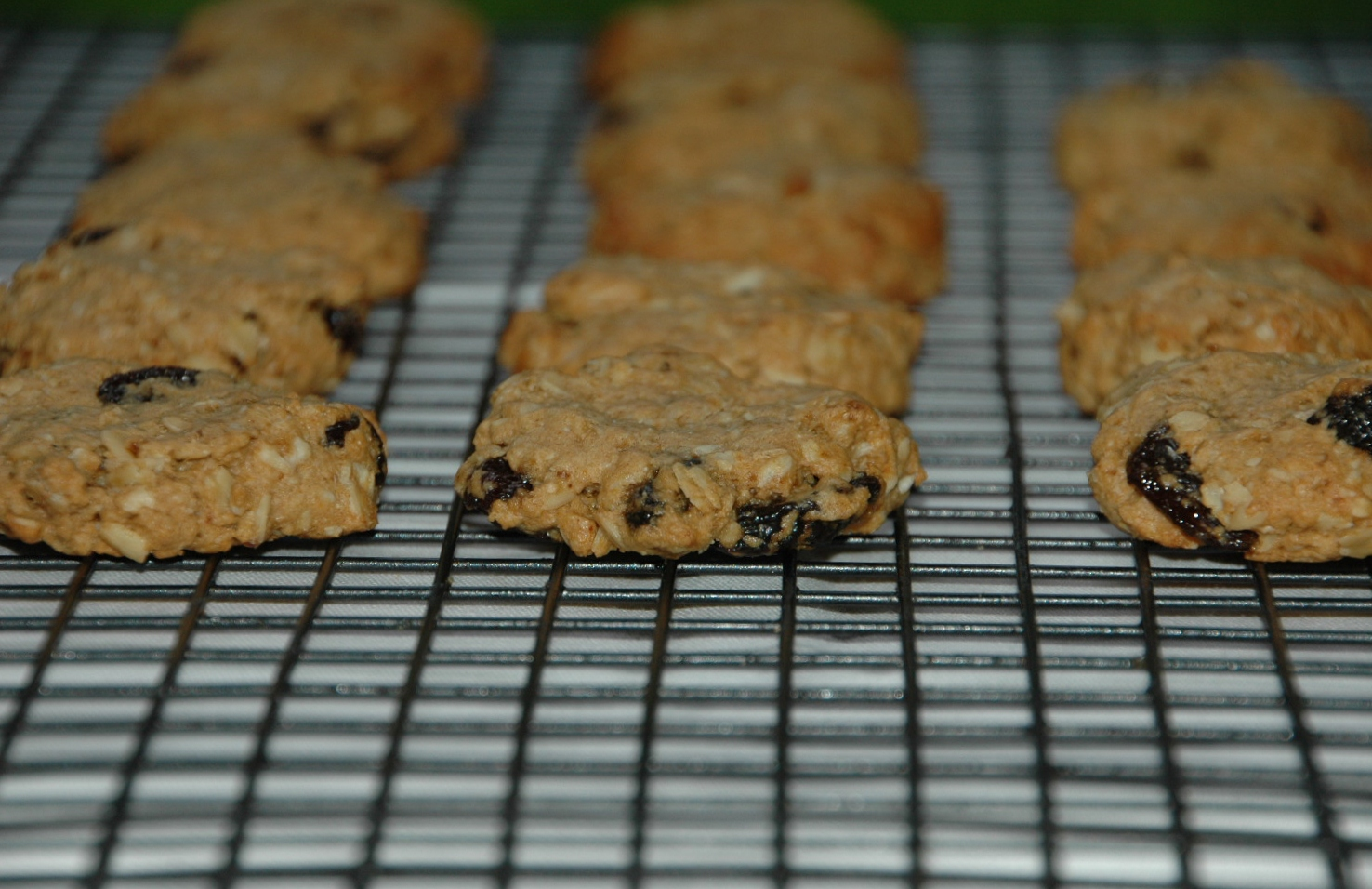 oatmeal raisin biscuits