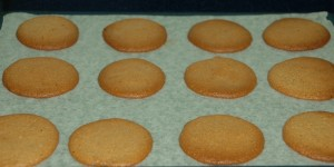 ginger nuts fresh out of the oven
