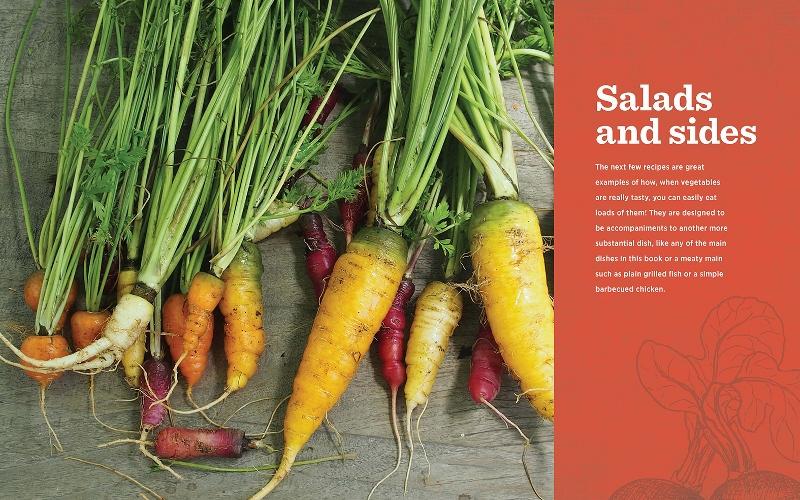 veggielicious salad opener (800x500)